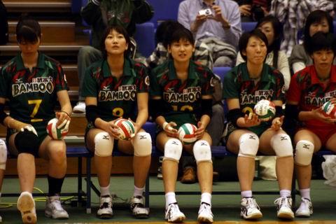 Bamboo1-4.JPG