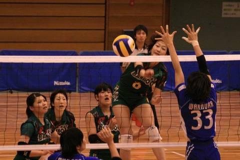 BambooSummer08-29.JPG
