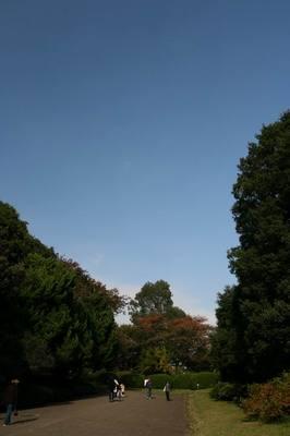 Koishikawa071117.JPG